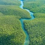 Recursos-Naturais-Da-Amazonia-9